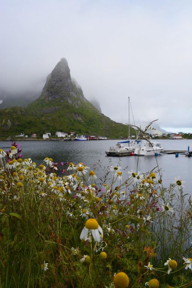 CoverMore_Lisa_Owen_Norway_Lofoten_Reine_Town.JPG