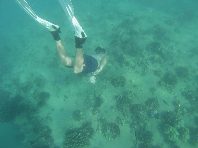 CoverMore_Lisa_Owen_USA_Hawaii_Electric_Beach_Oahu.JPG