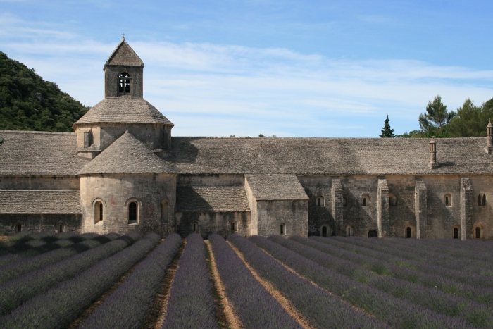 CoverMore_Lisa_Owen_France_Senanque_Abbey.jpg