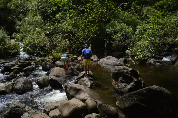 CoverMore_Hawaii_Kauai_CreekCrossing