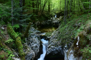 CoverMore_Lisa_Owen_Slovenia_Mostnice Gorge
