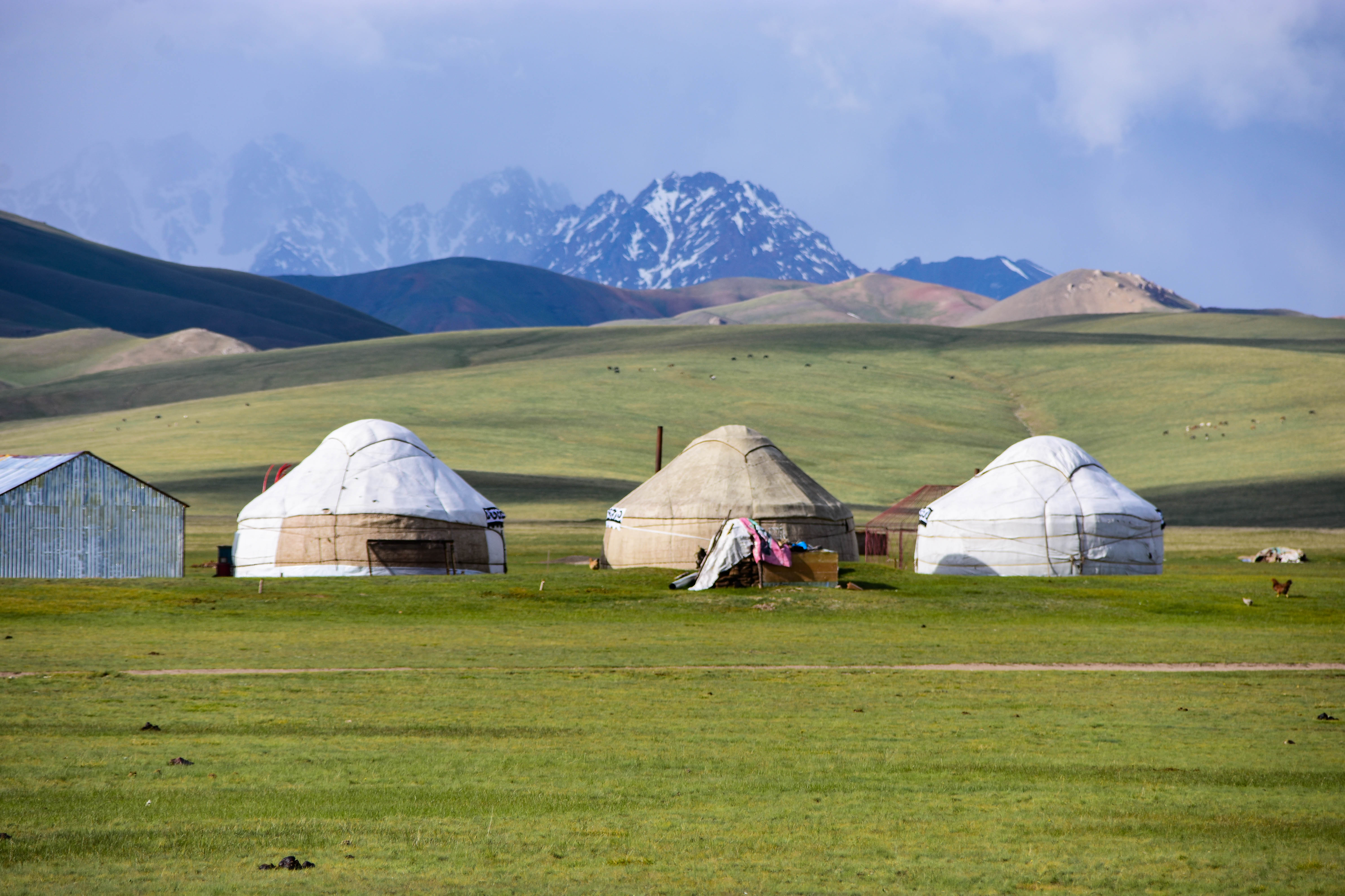 CoverMore_Lisa_Owen_Kyrgyzstan_Song Kul Yurts Row