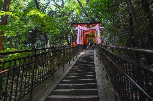 CoverMore_Lisa_Owen_Japan_Kyoto_Fushimi Shrine Stairs