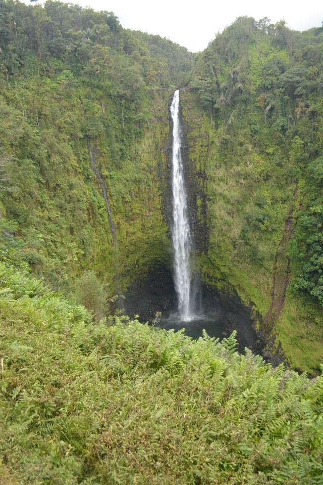 CoverMore_Lisa_Owen_Hawaii_Big_Island_Akaka_Falls - Copy