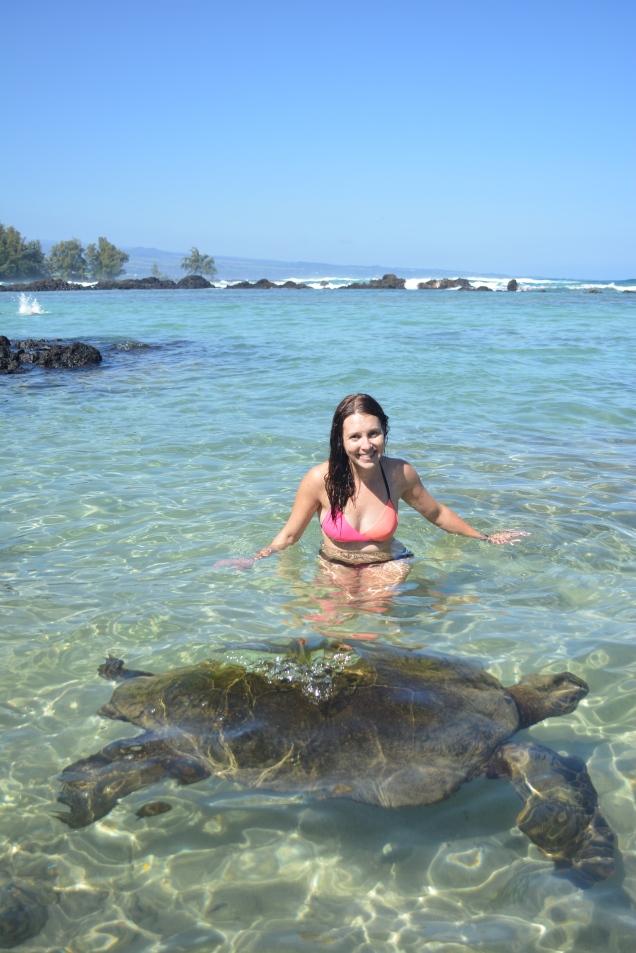 CoverMore_Lisa_Owen_USA_Hawaii_Big_Island_Turtle_Swimming - Copy