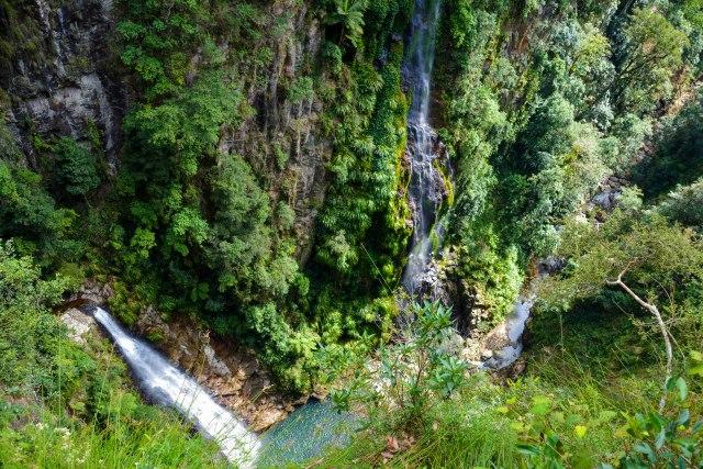 Coomera Falls.jpg
