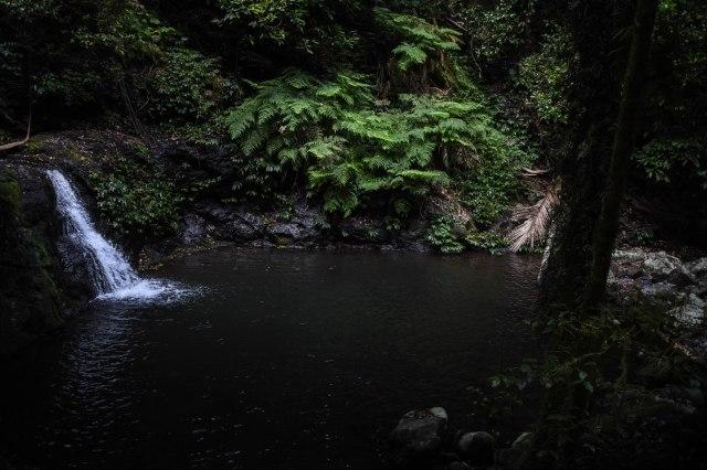 WAE_Tooloona Circuit Waterhole
